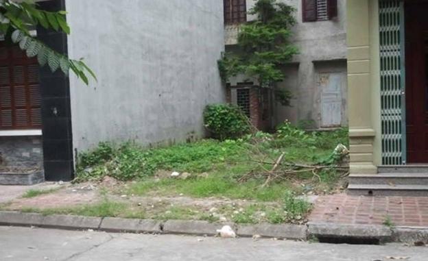 Cần bán miếng đất ở đường Tân Liễu, xã Hưng Long , Bình Chánh . dt 90m2 , 450tr